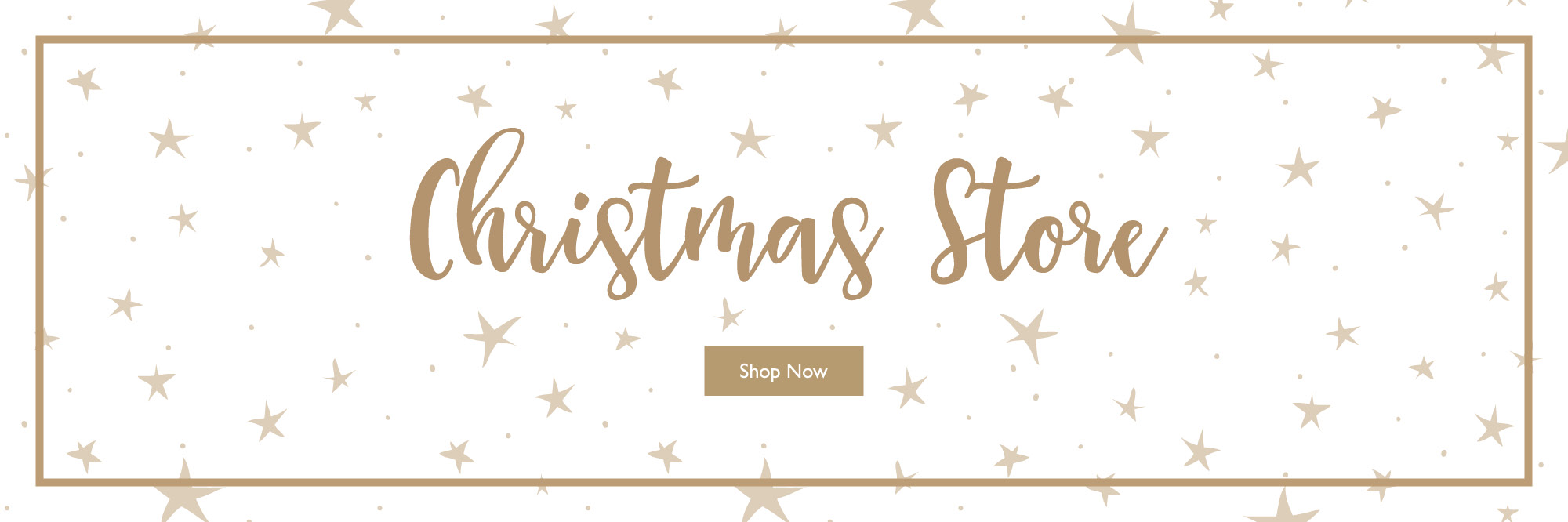 The Christmas Store Banner